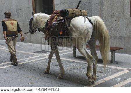 Man And Horse Walking Along The Way Of Saint James