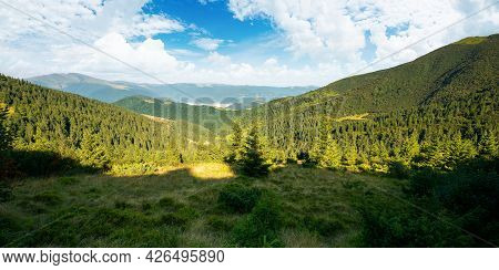 Beautiful Mountain Landscape In Morning Light. Coniferous Forest On The Steep Hills. Wonderful Summe