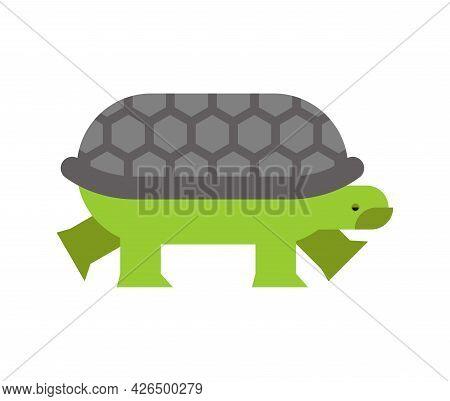 Turtle Isolated. Tortoise Vector Illustration. Animal Cartoon
