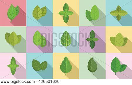 Basil Icons Set Flat Vector. Agriculture Aroma Leaf. Basil Healthcare