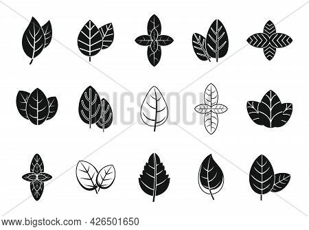Basil Leaf Icons Set Simple Vector. Agriculture Healthcare. Aroma Basil Herb