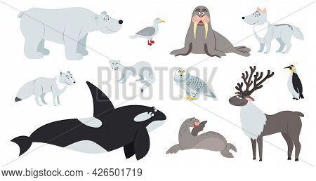 Arctic Animals. Polar Animal, Cartoon Cute Bear Walrus Penguin. Flat Fun Antarctic Seal, North Pole
