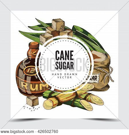 Cane Sugar And Rum Frame Or Label Engraving Vector Illustration Isolated.