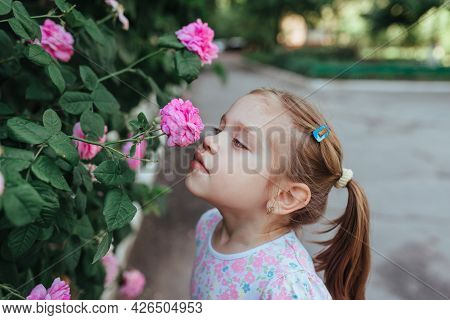 Little Girl With Flowers, Portrait Near A Blooming Rose Bush, Close-up, Horizontal Shot. Summer Time