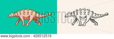 Dinosaur Ankylosaurus, Talarurus, Euoplocephalus, Saltasaurus, Jurassic. Engraved Vintage Hand Drawn