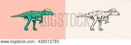 Dinosaur Pachycephalosaurus, Lexovisaurus, Skeletons, Fossils. Prehistoric Reptiles. Engraved Vintag