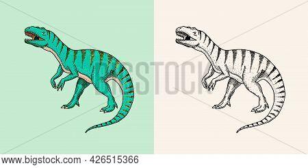 Dinosaurs Tyrannosaurus Rex, Afrovenator, Megalosaurus, Tarbosaurus, Struthiomimus Skeletons, Fossil