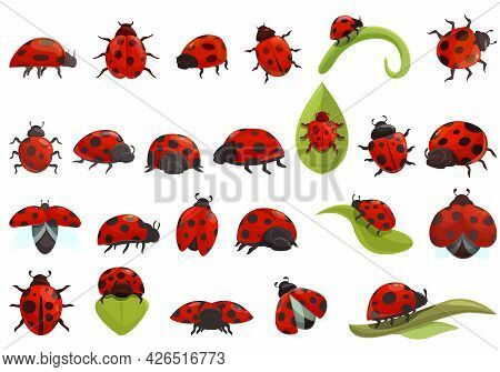 Insect Ladybird Icons Set Cartoon Vector. Fly Kids Insect. Adorable Ladybug