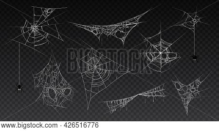 Spiderweb With Hanging Spider Insect, Isolated Set Of Cobwebs, Old And Scary, Dark And Vintage. Hall