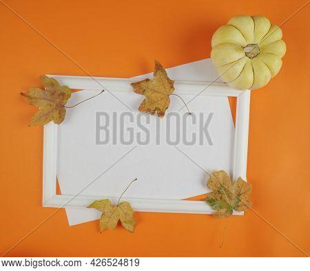 Autumn Still Life. Maple Leaves And Pumpkin. Frame. Autumn Seasonal Background, Autumn Card With Hel