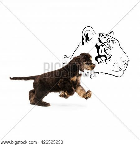 Side View Portrait Of Cute Smart Spaniel Puppy In Motion Isolated Over White Background. Concept Of
