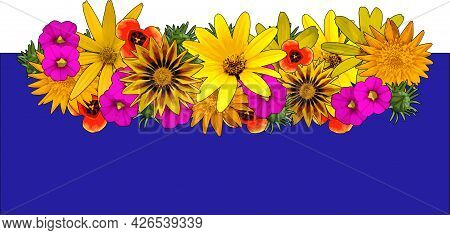 Flowers Vector Illustration Yellow Daisy Blooming On Blue Rectangle