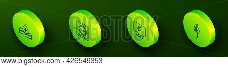 Set Isometric Line Water Energy, Electrical Outlet, Location With Leaf And Leaf Or Leaves Icon. Vect
