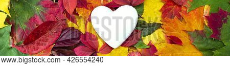 White Heart On Autumn Colorful Leaves. Open Heart Symbol, Copy Space. The Concept Of Unrequited Love