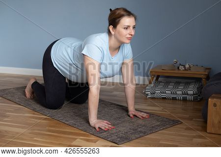 Prenatal Yoga Meditation. Pregnant Woman Doing Cat Yoga Pose At Home