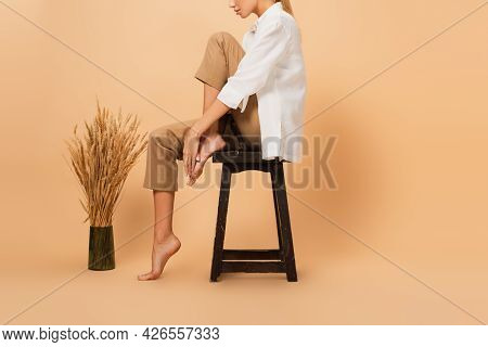 Side View Of Cropped Woman In White Shirt And Trousers Posing On Chair Near Spikelets On Beige Backg