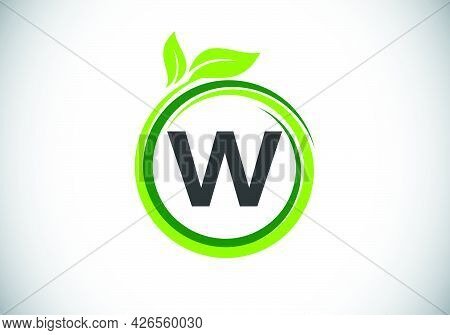 Initial W Monogram Letter Alphabet In A Spiral With Green Leaves. Font Emblem. Nature Icon Sign Symb