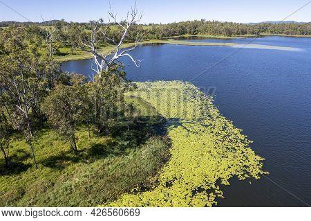 Aerial Over Yellow Green Algae And Shoreline Of Catchment Area Teemburra Dam Queensland Australia