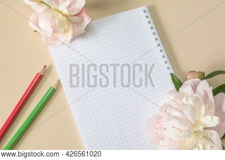 Spring-loaded Notebook And Colored Pencils, Large Beige Flowers And Peony Buds On A Beige Background