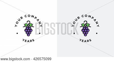 Unique And Elegant Laundry Logo Design With An Attractive And Attractive Appearance