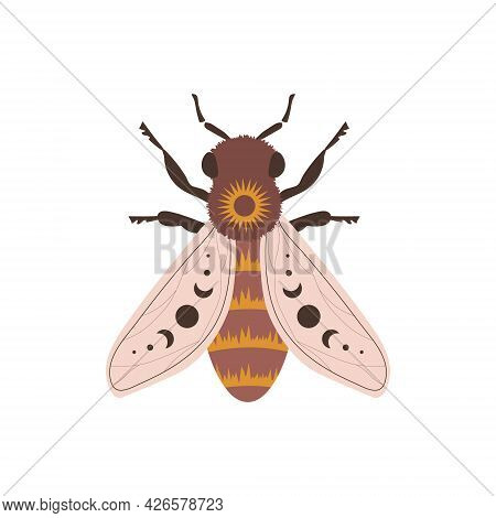 Boho Honeybee. Insect With Celestial Elements. Witch And Magic Symbol. Abstract Hand Drawn Vector Il