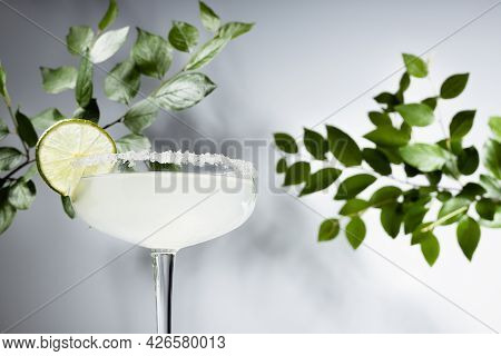 Cold Sour Mexican Summer Alcohol Cocktail With Salt Rim, Lime And Tequila With Green Leaves Of Branc