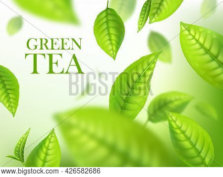 Green Tea Leaves, Organic Herbal Background, Vector Template For Beverage Advertising. Falling 3d Gr