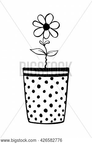 Pot With Flower. Hand Drawn Simple Black Outline Vector Illustration In Doodle Style, Isolated. Desi