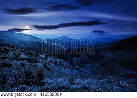 Carpathian Mountain Landscape At Night. Beatiful Scenery With Green Rolling Hills In Full Moon Light