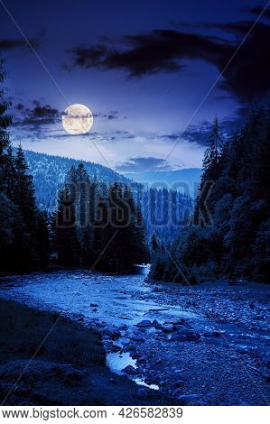 Mountain River Runs Through Forested Valley. Countryside Scenery On A Summer Night. Trees And Stones