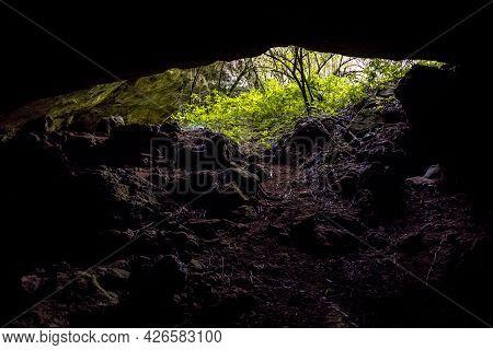 Entrance Of Limestone Cave In Karst Landscape Of Cevennes France
