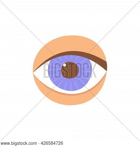 Human Eye In Front. The Eye Is Like A Sense Organ. Part Of The Face. The Organ Of Vision. Vector Ill