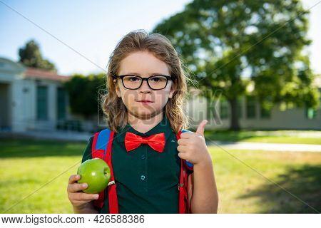School Child Concept. Cute Pupil, Kid In School Uniform With Backpack Outdoor. Portrait Of Nerd Scho