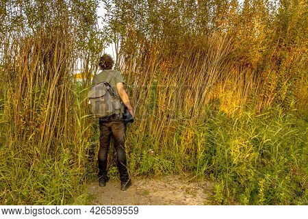 Nature Photographer Peeking Through Natural Hide Looking For Birds. Stellendam, Zeeland Province, Th
