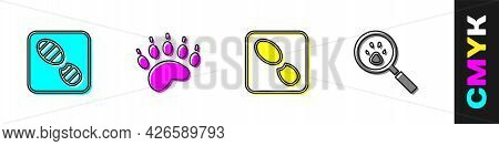 Set Human Footprints Shoes, Bear Paw, And Paw Search Icon. Vector