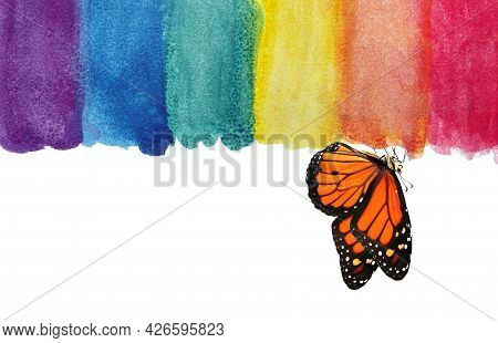 Colors Of Rainbow. Photo Watercolor Paper Texture. Abstract Watercolor Background. Wet Watercolor Pa