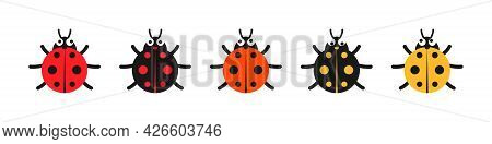 Lady Bug With Big Eyes. Red, Black, Yellow Colored Lady-beatles