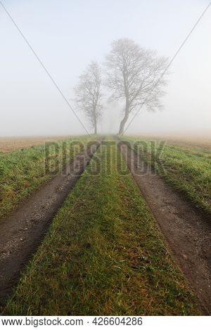 Misty Landscape And Atmosphere In Odder, Denmark