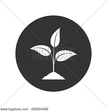 Sprout Graphic Icon. Young Plant Growing In The Ground Sign In The Circle Isolated On White Backgrou