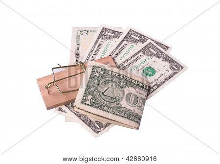 Mouse Trap Baited Cash
