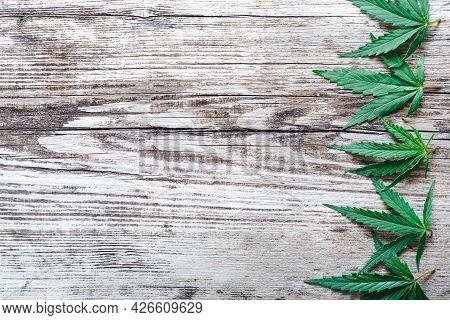 Cannabis Weed Ganja Green Hemp Leaves On Old Wood Background With Copy Space. Medical Marijuana Plan