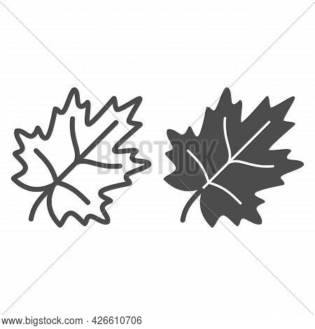Maple Leaf Line And Solid Icon, Trees And Leaves Concept, Leaves Of Maple Tree Vector Sign On White