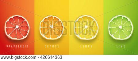 Grapefruit, Orange, Lemon And Lime Fresh Fruits. 3d Vector Realistic Set. Set Of Summer Greeting Car