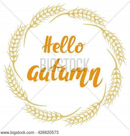 Round Frame Of Spikelets With The Inscription Hello Autumn, Vector Illustration. Hand Lettering, Gre