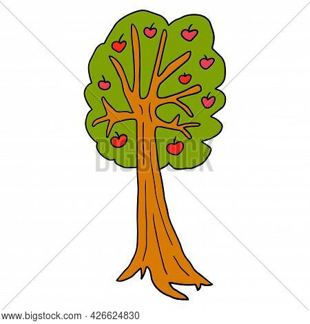 Cartoon Doodle Apple Tree Isolated On White Background. Fruit Tree In Childlike Style.