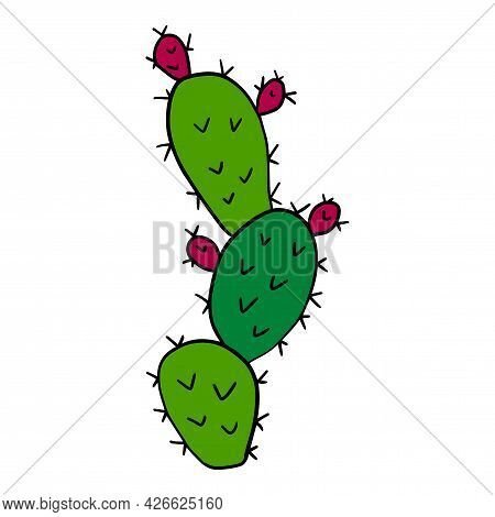 Cartoon Doodle Cactus Isolated On White Background. Cute Floral Desert Element In Childlike Style.