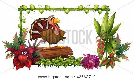 Illustration of a turkey in the garden on a white background