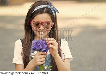 Fancy Girl Fresh Cornflowers Bouquet Summer Season, Soft Petals Concept