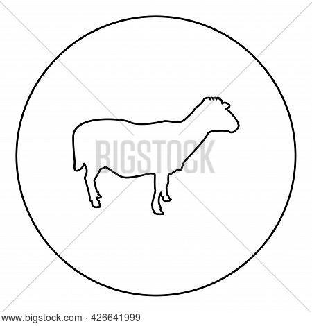 Sheep Ewe Domestic Livestock Farm Animal Cloven Hoofed Lamb Cattle Silhouette In Circle Round Black
