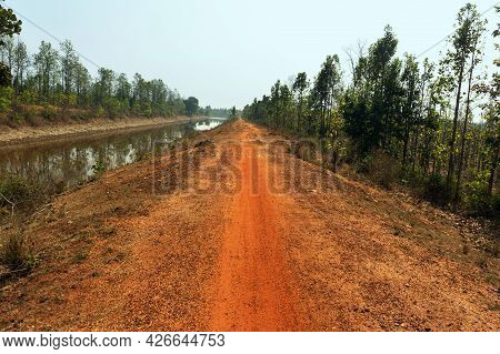 Soil Made Village Roads Inside Jungle Surrounded By Green Trees Beside Water Under Blue Sky At India